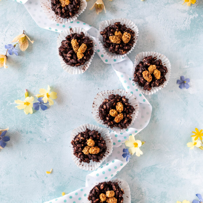 Healthy Chocolate Nests (Dairy and Gluten Free)